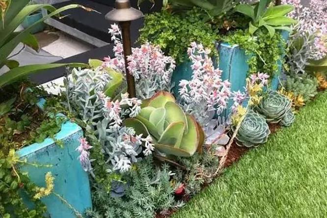 炎炎夏日,让庭院成为你的绿荫氧吧