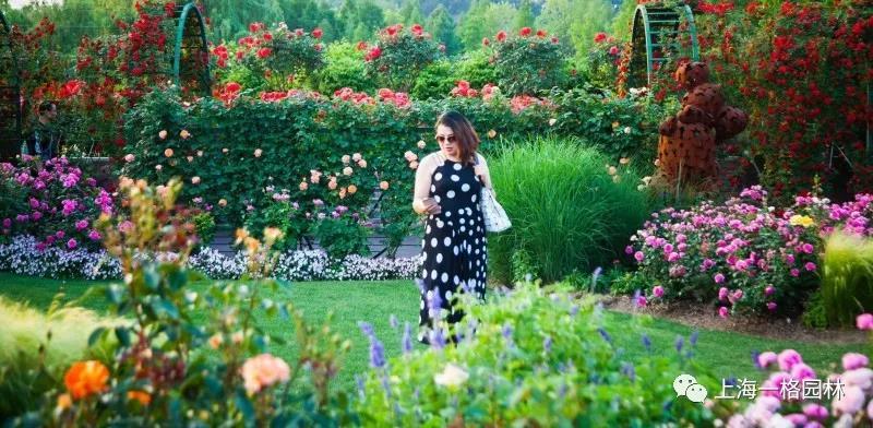 一格园林设计总监陆苗谈庭院设计是心与心的交流
