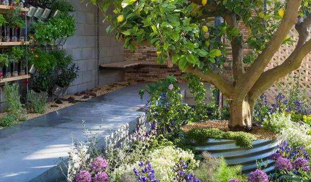 花园庭院景观设计中,不宜种植较大的树木