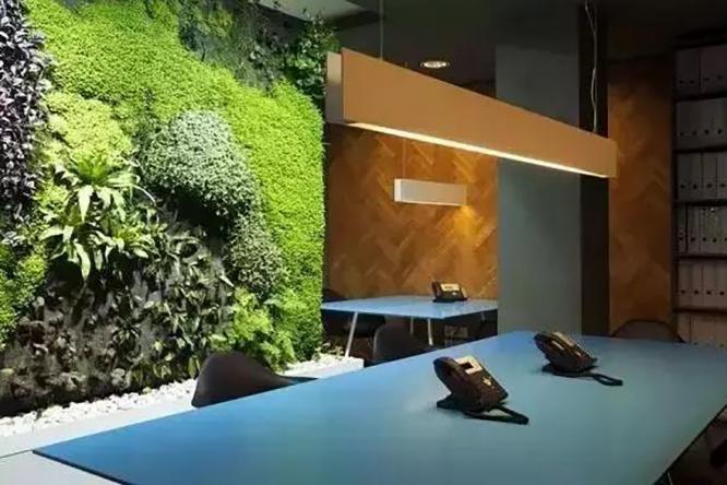 会呼吸的植物墙