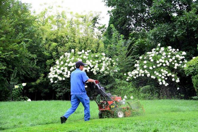 草坪的保养不容忽视,为您的花园景观做好最基础的养护吧