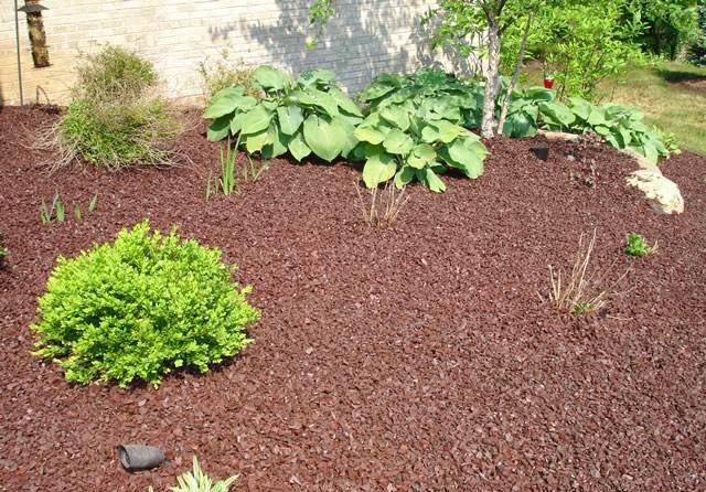 私家庭院中,改良土壤的重要性