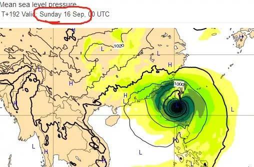 """台风""""山竹""""登陆广东,吹残了花园景观里的生命"""