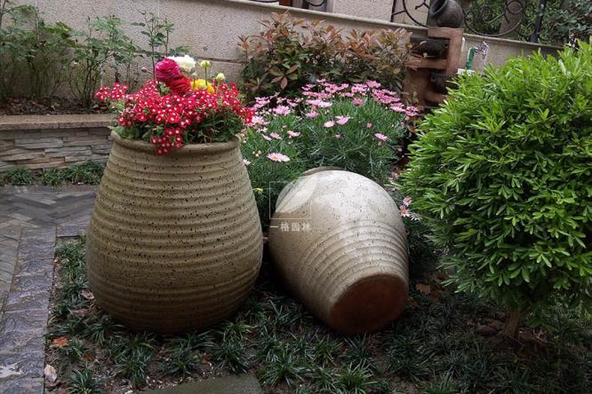 私家花园景观中那些美丽的植物配角