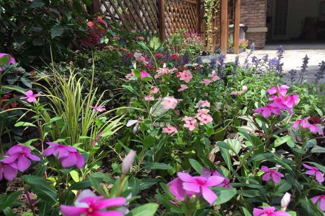 私家花园软装十大色系推