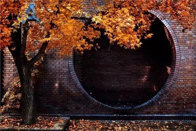 中国色•庭院情