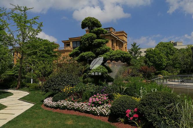 别墅花园景观里的菜园
