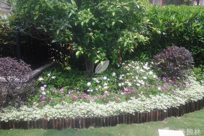 私家庭院景观设计装修之夏季驱蚊系统